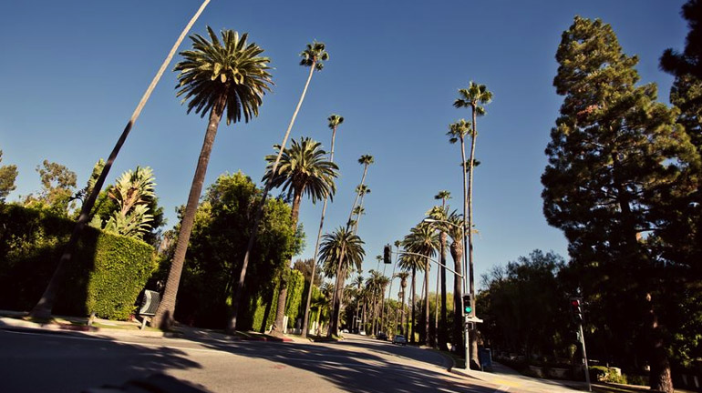 City of Brentwood CA Real Estate Market